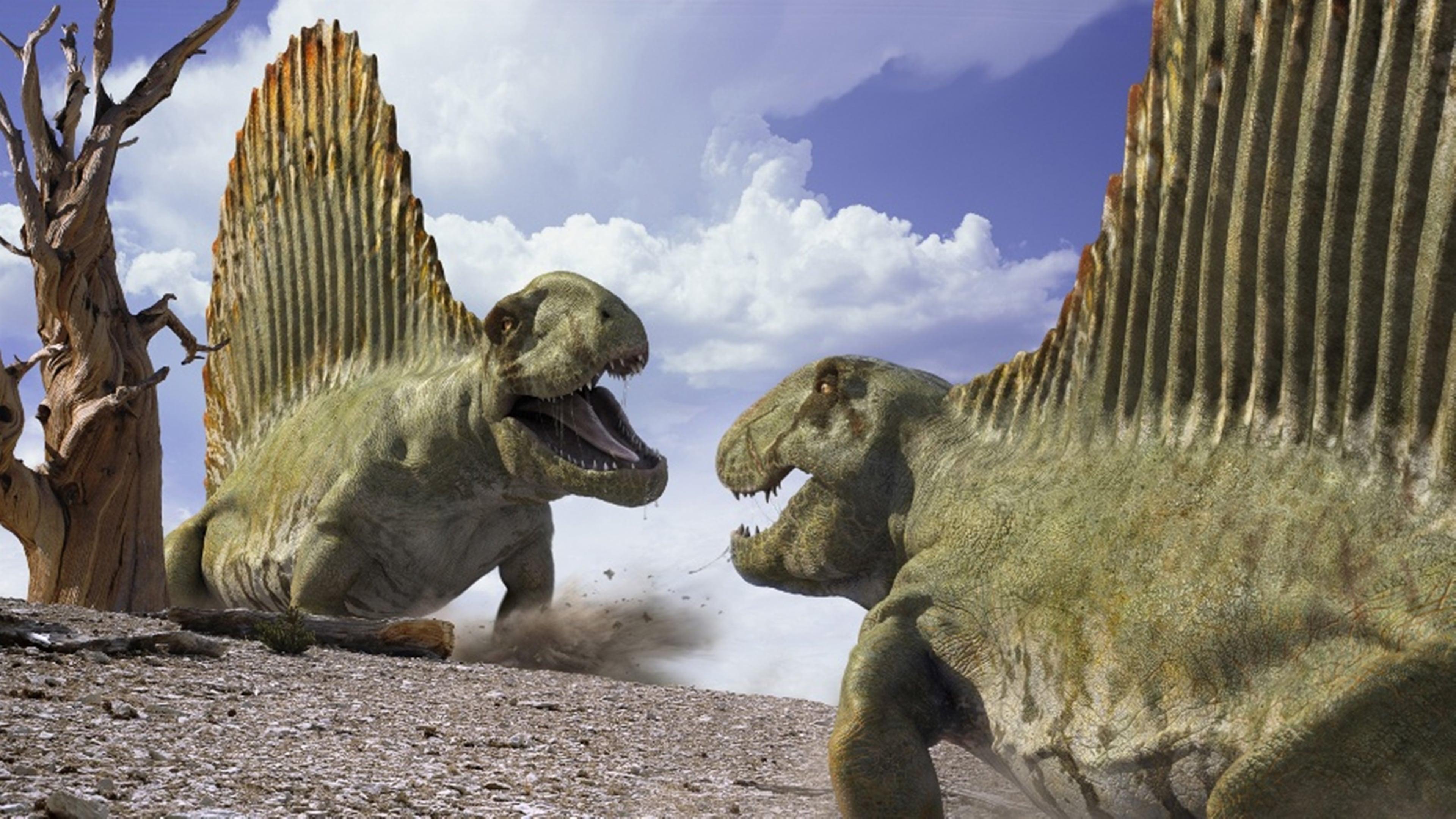 картинки прогулки с монстрами жизнь до динозавров окрестностях местечка